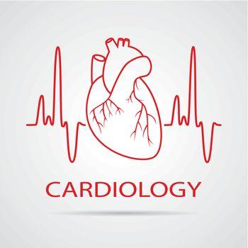 vector human heart medical symbol of cardiology