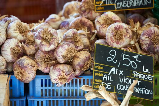 Garlic for sale in Provence France