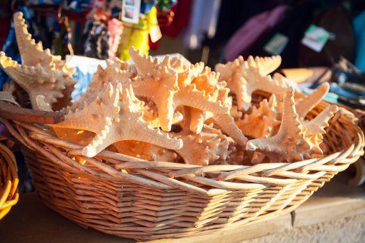 Starfish in a souvenir shop