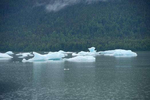 iceberg float