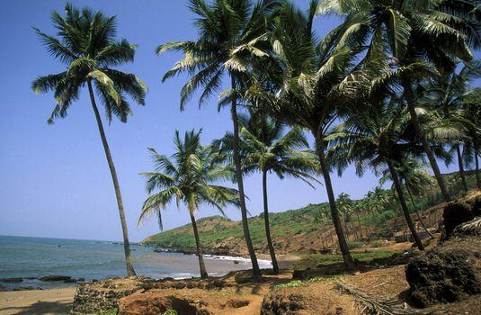 the beach of Anjuna in the Province Goa in India.