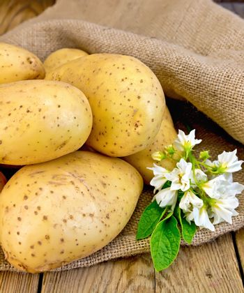 Potatoes yellow with flower on sackcloth and board