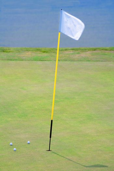 golf hole with a flag