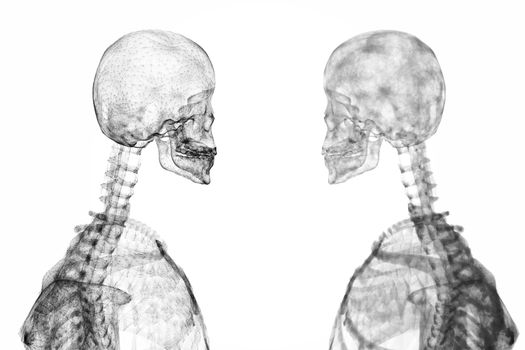 Skeleton graphics facing each other
