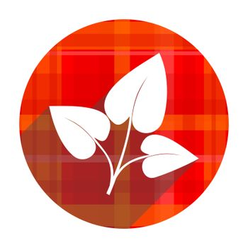 leaf red flat icon isolated