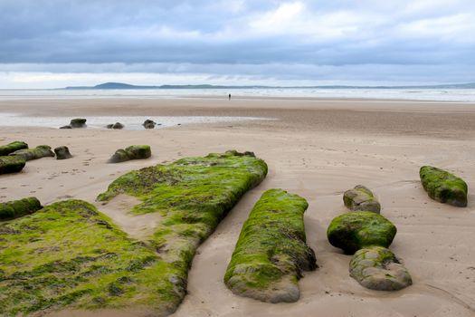 girl walking near unusual mud banks at Beal beach in county Kerry Ireland on the wild Atlantic way