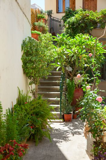 Patio with blooming potted flowers in a greek town