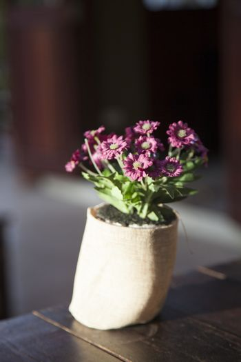 Vase of flowers is placed on the table in a restaurant.