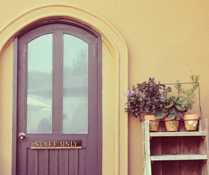 Staff only on door with flower pot for decorated, retro filter effect