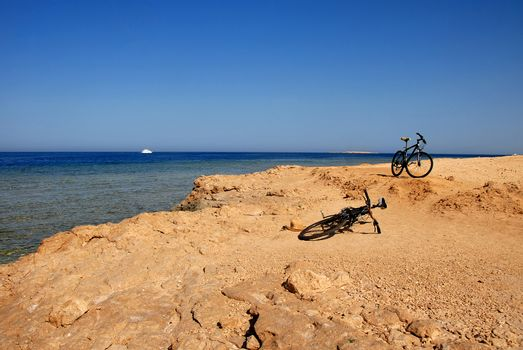 Two bicycles on the seaside