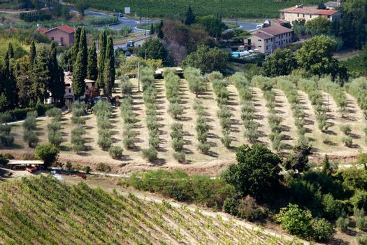 Hills around San Gimignano. Tuscany