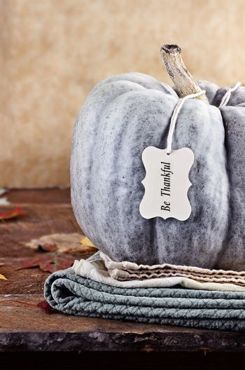 Green Pumpkin with Tag