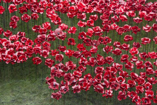 The Blood Swept Lands and Seas of Red installation in the moat of the Tower of London, 2014