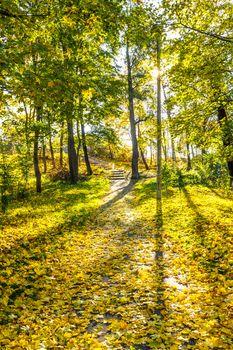 Upward path with stairs