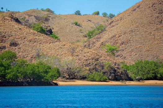 The beautiful nature of Komodo national park