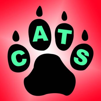 Cats Paw Indicating Animal Care And Kitty