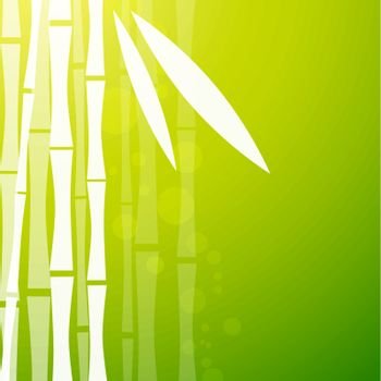 Abstract Bamboo Green Background With Copyspace