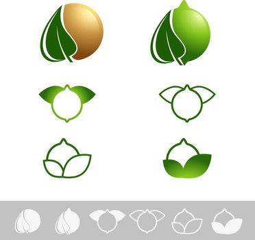 Macadamia Nut Logo Design Set Over White