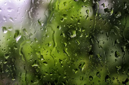 Storm Glass Pane