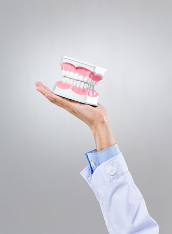 Dentist hold with denture