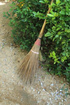 broomstick in shrub
