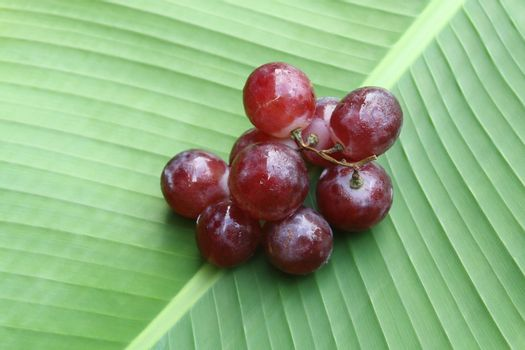 red grapes on banana leaf