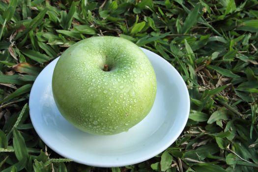green apple on white dish