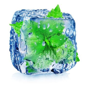 Mint in ice cube