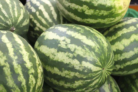 vector watermelons