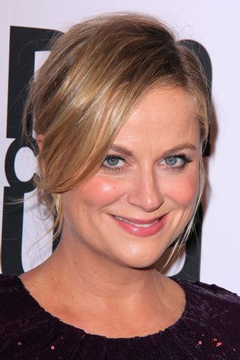 Amy Poehler at the PEN Center USA 24th Annual Literary Awards, Beverly Wilshire, Beverly Hills, CA 11-11-14/ImageCollect