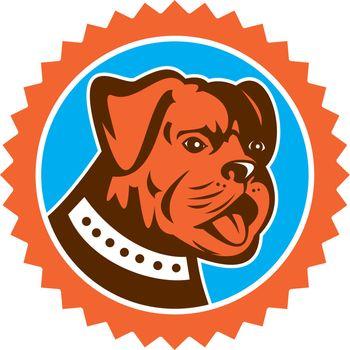Bulldog Dog Mongrel Head Mascot Rosette
