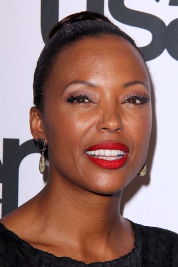 Aisha Tyler at the PEN Center USA 24th Annual Literary Awards, Beverly Wilshire, Beverly Hills, CA 11-11-14/ImageCollect