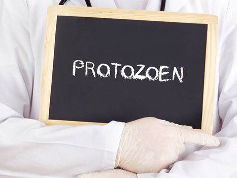 Doctor shows information: protozoa in german language