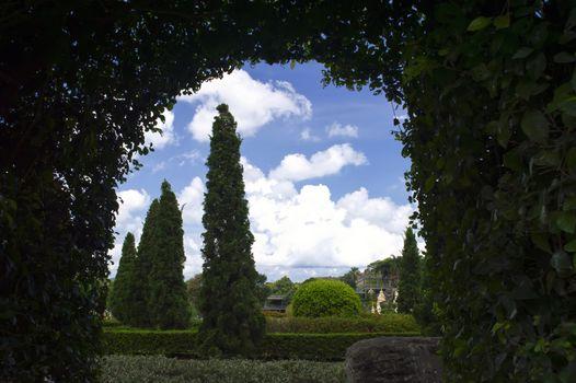 Arch of Foliage.