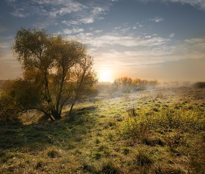 Evening landscape in late summer with sunshine