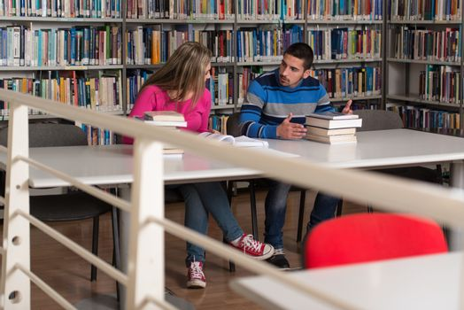 Two College Students In Library Reading Books
