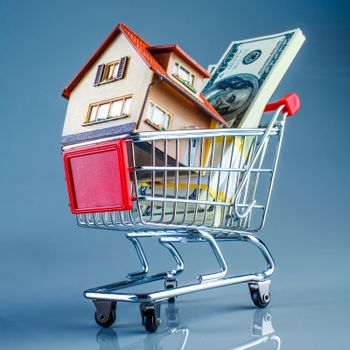 shopping cart and house