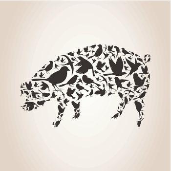Pig made of birds. A vector illustration