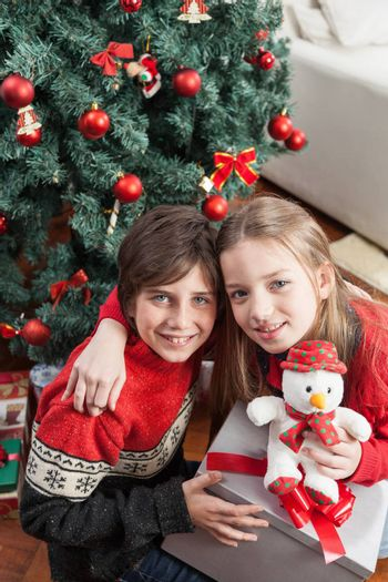 10-12, 8-10, adorable, beautiful, blue, box, boy, brother, camera, cap, caucasian, celebration, child, christmas, claus, cute, december, decoration, eyes, face, fun, gift, girl, happiness, happy, holding, holiday, joy, kid, little, look, looking, lovely, model, old, people, present, property, red, releases, ribbon, santa, season, sister, smile, smiling, teddy, toy, tree, vertical, winter, xmas, years, young