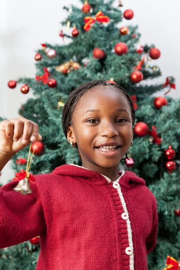 4-6, african, apartment, balls, bell, black, celebration, cheerful, child, childhood, christmas, cute, decoration, decorations, festive, festivity, girl, happy, home, house, household, joyful, kid, life, little, living, model, old, one, person, portrait, pretty, property, red, releases, room, smile, smiling, sweater, time, tree, vertical, xmas, years, young