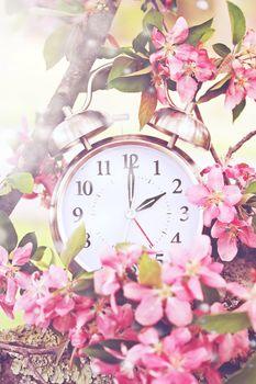 Spring Daylight Savings Time