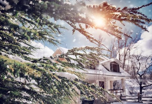 Sunny frosty winter day