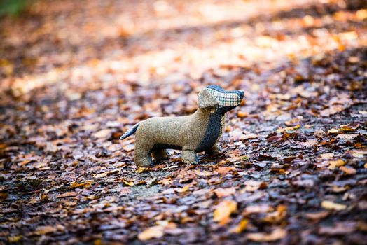 Soft toy dog is placed in autumn forest