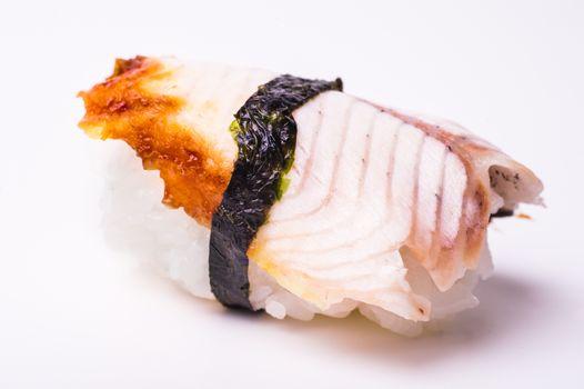 eel sushi close up on white background