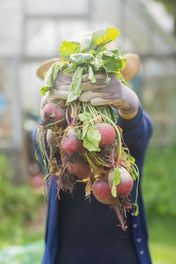 Woman showing home grown vegetables