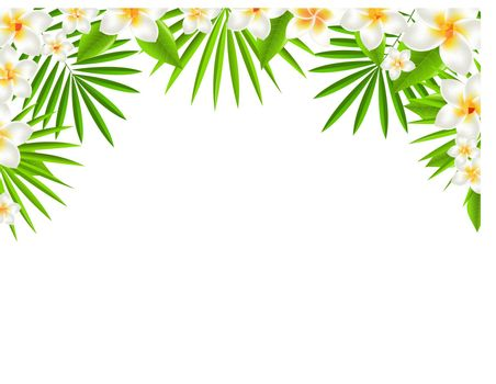 Border From Frangipani, With Gradient Mesh, Vector Illustration