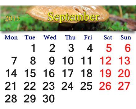 calendar for September of 2014 on mushrooms
