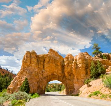 Arches National Park, USA - Entrance Road