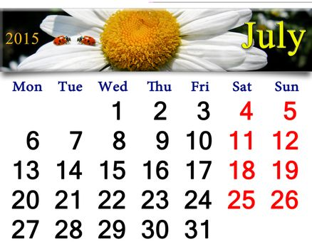 calendar for July with ladybirds on camomile