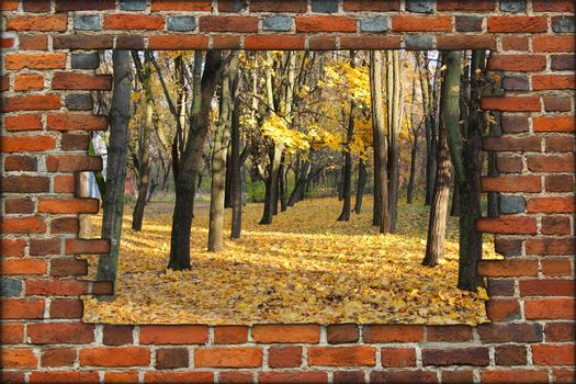broken brick wall and view to Autumn park